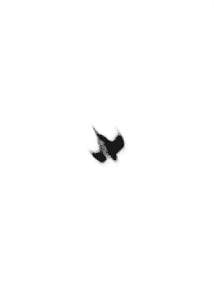 m4-dying-birds-vii